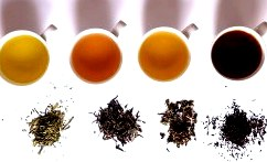 Классификация чая по всем типам