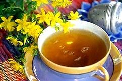 Зверобойный чай - лекарство от Сто болезней  Все о чае - Чаепедия