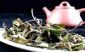 китайский белый чай, белый чай, как заваривать белый чай, как правильно хранить белый чай, полезные свойства белого чая
