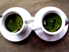 Цельнолистовой чай