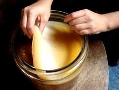Где и как хранить чайный гриб