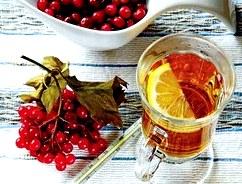 Чай с калиной: рецепты, полезные свойства